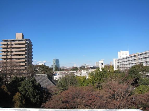 屋上から見た景色