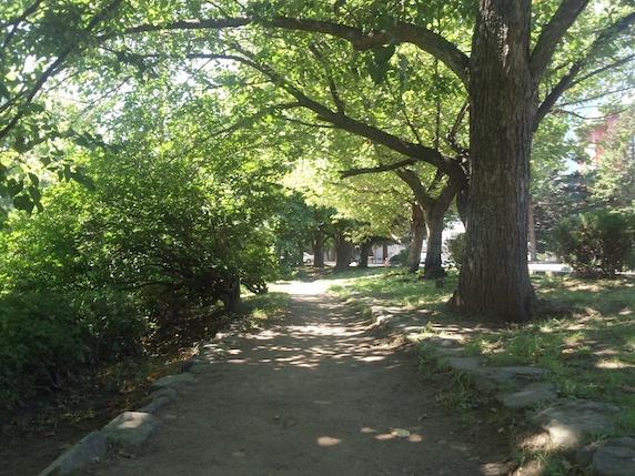 札幌 大道り公園